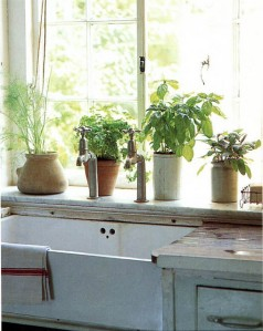 country kitchen rustic herbs